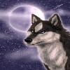 Razing Wolf's Avatar